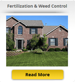 lawn fertilization program