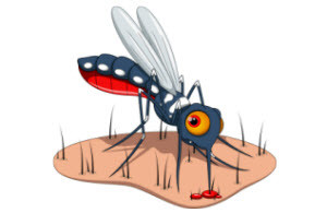 effective mosquito control