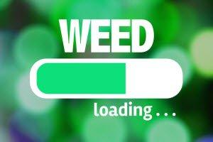 season long weed control