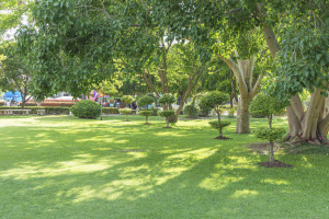 lawn services in woodstock ga