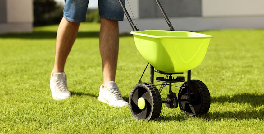 fertilizer with weed control