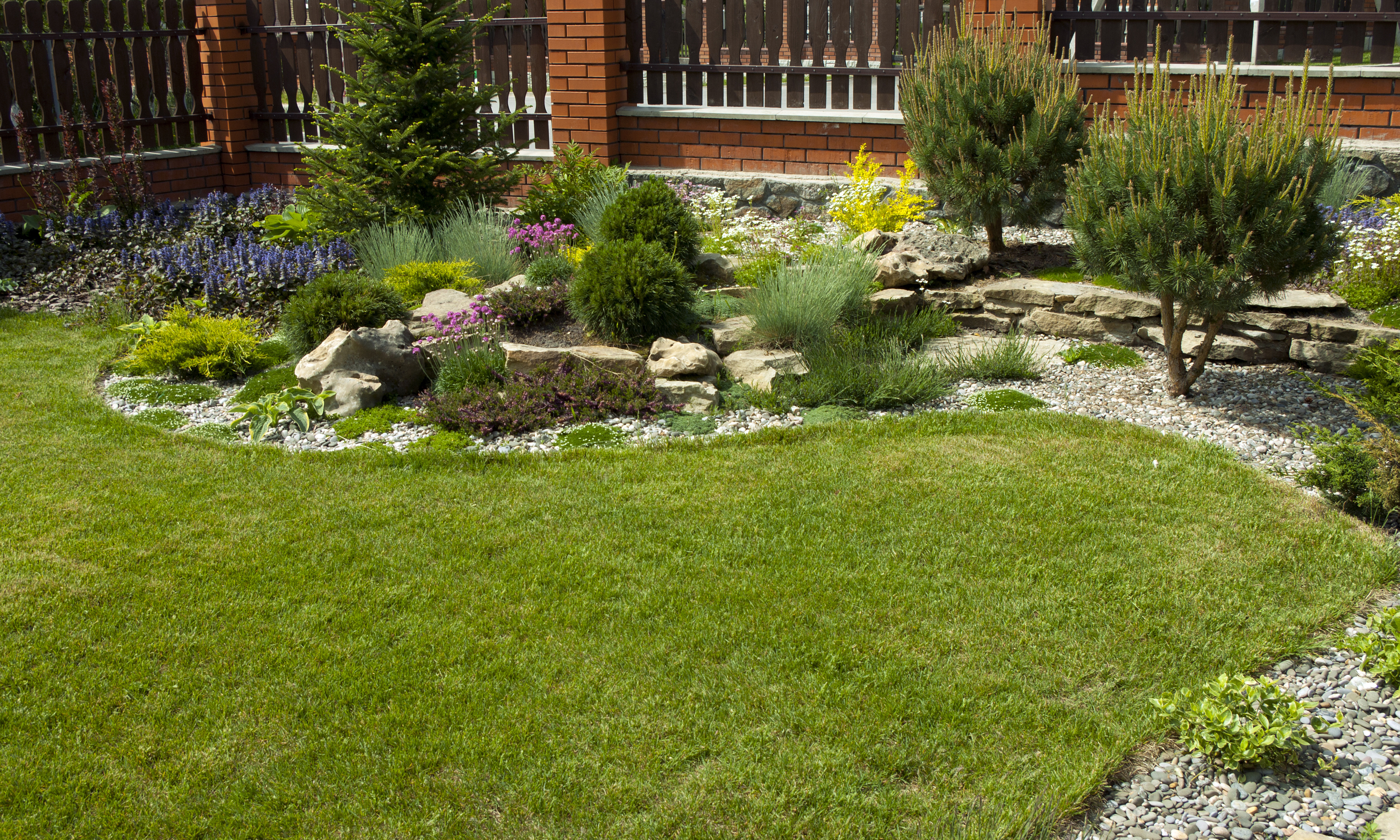 Lawn Services In Charlotte North Carolina Think Green Lawn