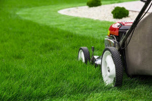 Lawrenceville, Georgia Lawn Services