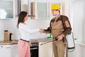 What's the Best Way to Get Started with Spring Home Pest Control?