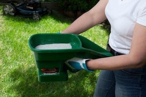 The 7 Best Lawn Fertilizing Tips You'll Find for Your Summer Lawn Care