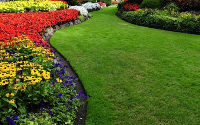 My Garden Is Planted, How Do I Manage Flower Bed Weed Control?