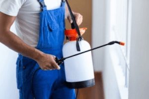 Home Pest Control Products