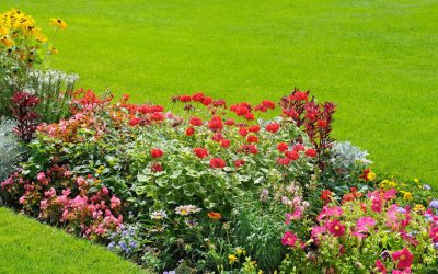 Best Weed Control in Flower Beds This Summer